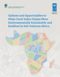 Make food value chains more environmentally sustainable and resilient in Sub-Saharan Africa